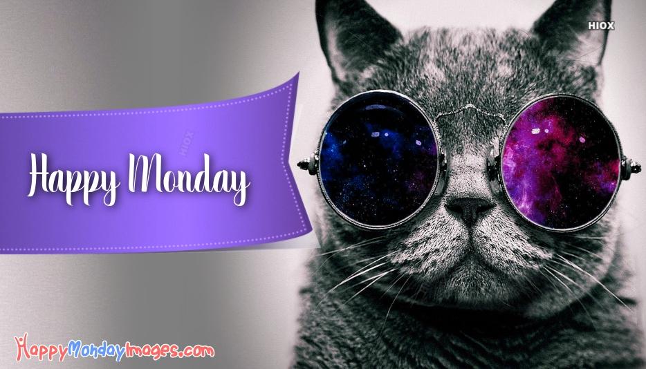 Happy Monday Cat Images