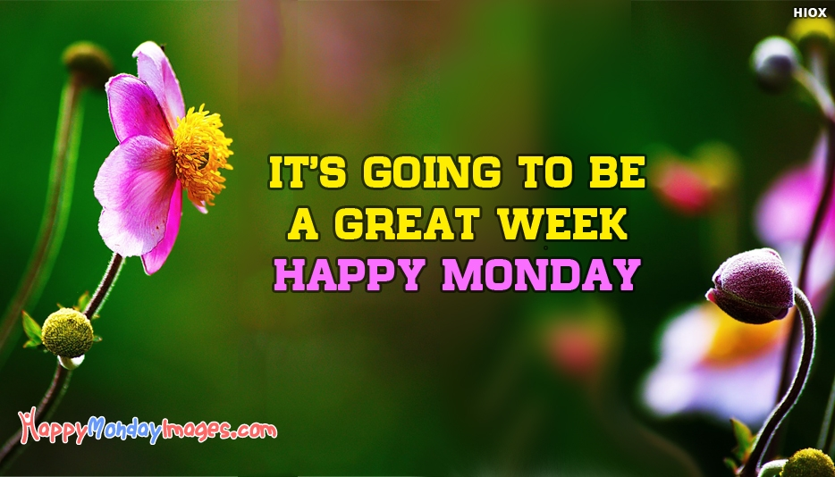 Happy Monday Everyone Wishes Images