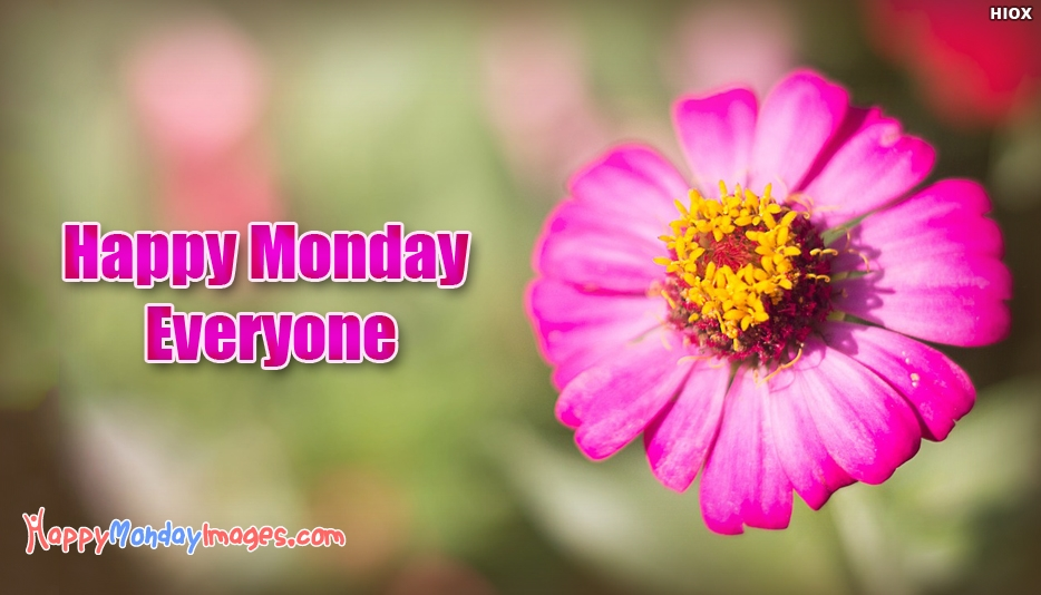 Happy Monday Everyone - Happy Monday Images for Everyone