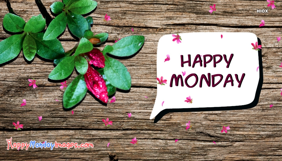 Happy Monday Flowers Images