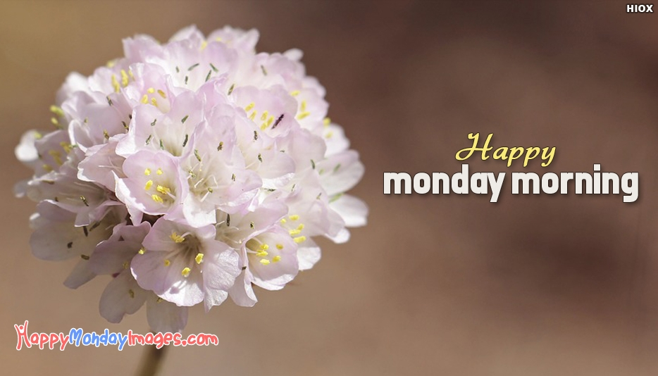 Happy Monday Morning - Happy Monday Images for Morning