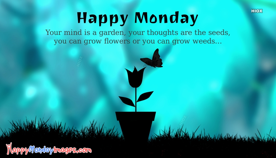 Happy Monday Motivational Quotes | Your Mind Is A Garden. Your Thoughts Are The Seeds. You Can Grow Flowers Or You Can Grow Weeds