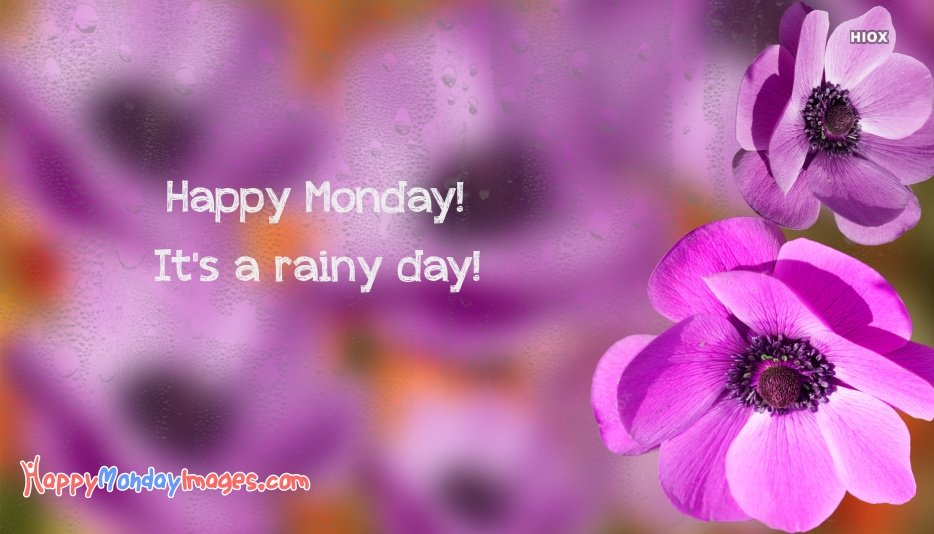 Happy Monday Rainy