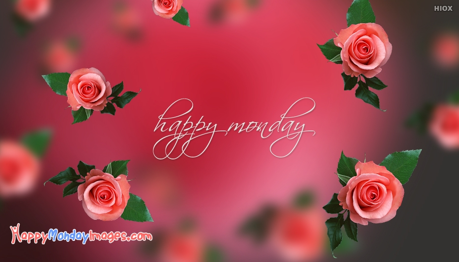 Happy Monday Rose Image