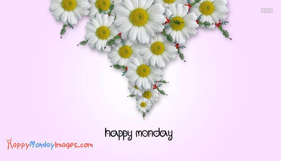 Happy Monday Tropical