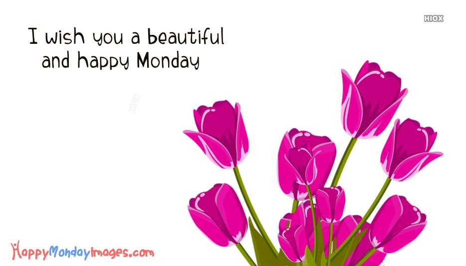 I Wish You A Beautiful And Happy Monday