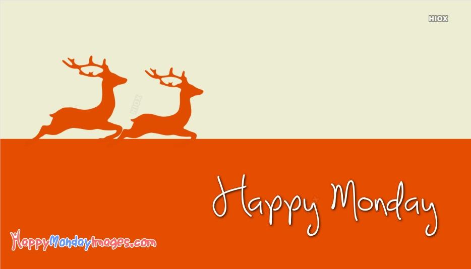 Happy Monday Animals Pictures