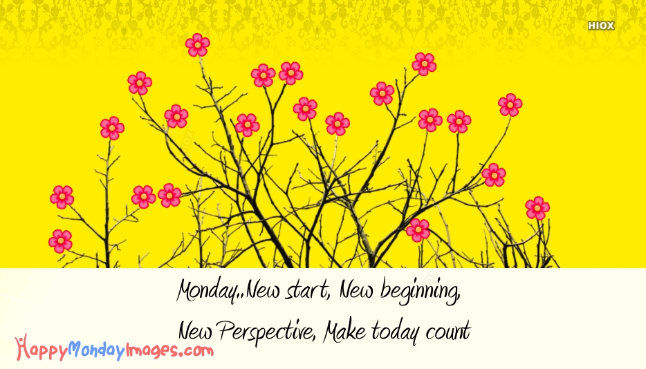 Monday..New Start, New Beginning, New Perspective, Make Today Count