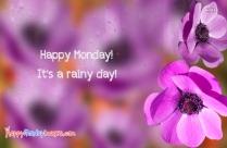 Happy Monday Rainy