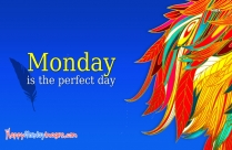 Monday Is The Perfect Day