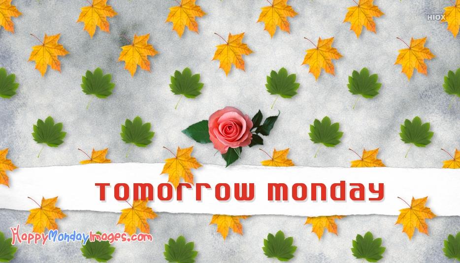 Tomorrow Monday